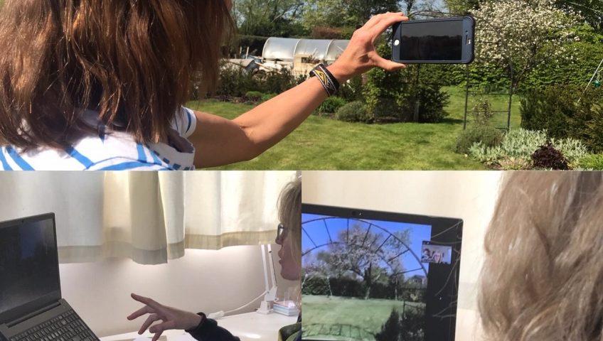 Example images combine of virtual garden design offering