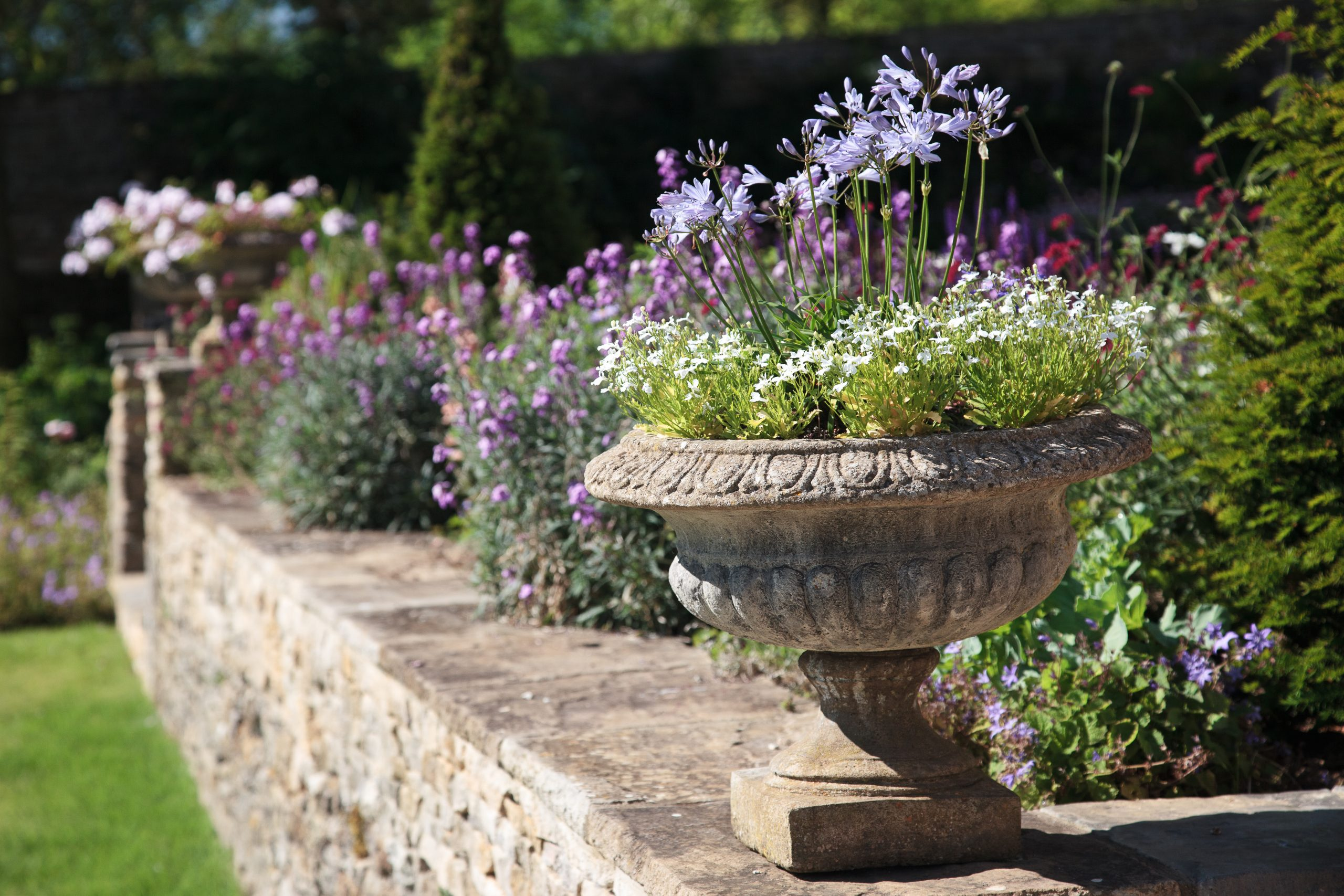 Cotswold stone wall and flower pots